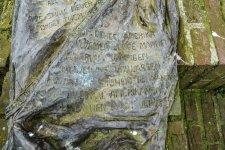 Parachute Grave tekst-5482