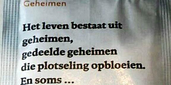 gedicht, geheimen, poëzie, suikerzakje, Annabel Torres, Stedelijk Museum, Amsterdam