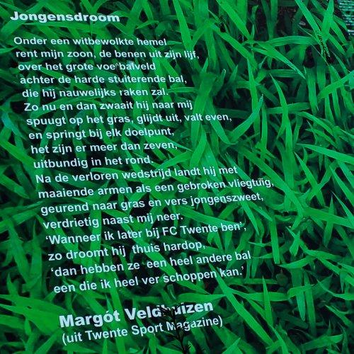 Voetbal Veldhuizen 2-5235