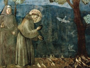Franciscus, Giotto, Assisi, vogels