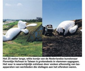 afgebrand konijn, Taiwan, Florentijn Hofman