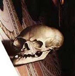 Hans Holbein de Jonge, Schedel in het juiste perspectief