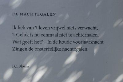 Bloem Den Haag