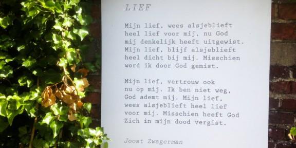 Poëzie, gedicht, Joost Zwagerman, Watou