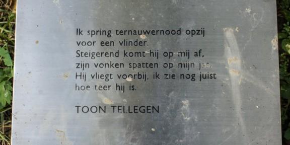 Poëzie, gedicht, Toon Tellegen, Geuldal, Gulpen