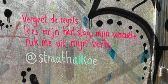 Poëzie, gedicht, Straathaikoe, Utrecht