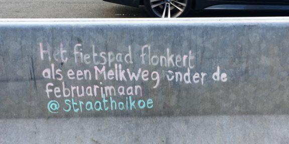 Poëzie, gedicht, Straathaikoe, Utrecht, haiku