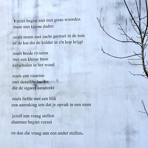 Poëzie, gedicht, Remco Campert, Gent
