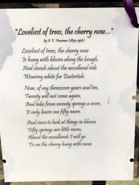Poëzie, gedicht, A.E. Housman, New York