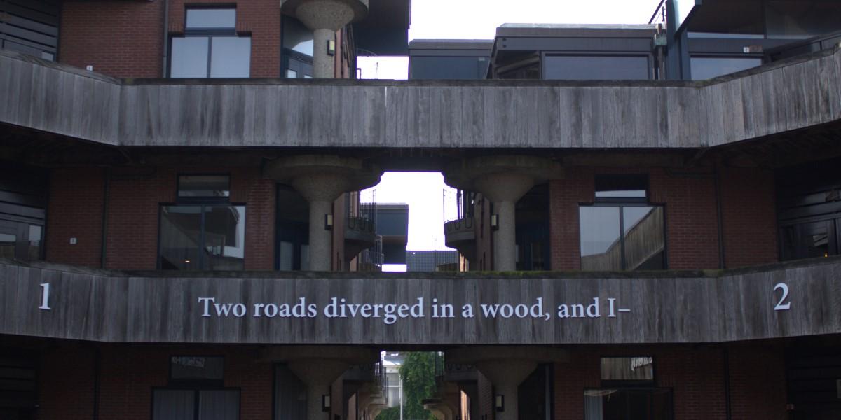Poëzie, dichtregels, Robert Frost, Leiden