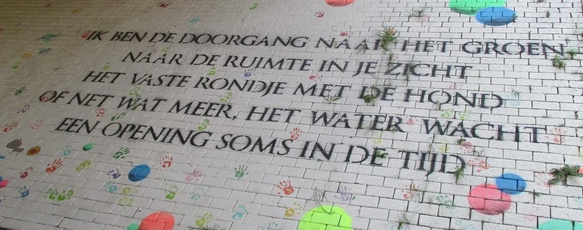 https://www.dorsoduro.nl/wp-content/uploads/2020/08/EVA-Brummen-MM_InPixio.jpg