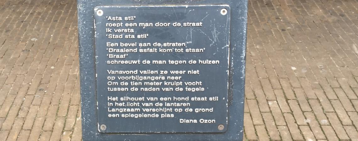 Poëzie, gedicht, Diana Ozon, Doetinchem