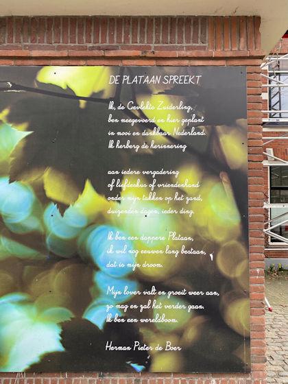 De plataan spreekt, gedicht van Herman Pieter de Boer, gevonden in de Bollenhofsestraat in Utrecht