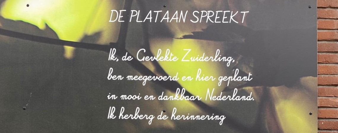 Poëzie, gedicht, Herman Pieter de Boer, Utrecht